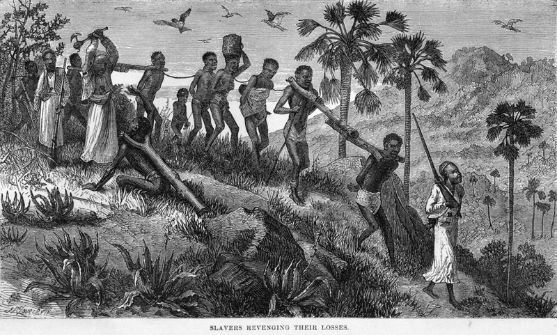 """This engraving shows a coffle of men, women, and children, led by Arab slavers. One of the guards is murdering a captive unable to keep up with the rest. These people were taken across the Central Interior region to the east coast of Africa. The engravings in this book were based on, according to the editor, """"rude sketches made by Livingstone."""" On June 19, 1866, Livingstone explained how his expedition """"passed a woman tied by the neck to a tree and dead, the people of the country explained that she had been unable to keep up with the other slaves in a gang, and her master had determined that she should not become the property of anyone else if she recovered after resting a time. . . we saw others tied up in a similar manner. . . the Arab who owned these victims was enraged at losing his money by the slaves becoming unable to march, and vented his spleen by murdering them"""" (p. 56). This print is one of the best known and frequently reproduced images in the literature on slaving in Africa. Also published in: J. E. Chambliss, The Life and Labors of David Livingstone (Philadelphia, 1875), p. 435; The Life and African Explorations of Dr. David Livingstone (St. Louis, 1874), p. 87; and in Thomas W. Knox, The Boy Travellers on the Congo (New York, 1888), p. 419 --with the caption Slave Caravans on the Road; Knox is sometimes erroneously given as the primary source."""