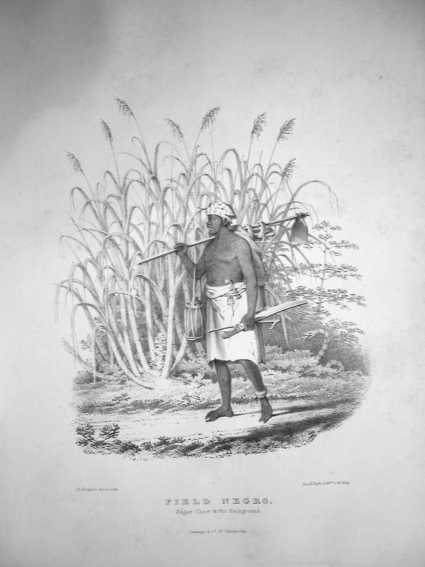 """Bridgens described how """"the hoe is the only tool used for making cane holes. The laborer also carries a cutlass and crook, the latter to assist in the removal of dead leaves from the cane plant; on the hoe handle, he also carries a sort of sandal worn when in the woods or to protect the feet from thorns in newly cultivated land. On his right arm there is a too-too in a coarse netting of linen, termed by the Negroes tie-tie; the too-too is a calabash canteen for holding water."""" A sculptor, furniture designer and architect, Richard Bridgens was born in England in 1785, but in 1826 he moved to Trinidad where his wife had inherited a sugar plantation, St. Clair. Although he occasionally returned to England, he ultimately lived in Trinidad for seven years and died in Port of Spain in 1846. Bridgens' book contains 27 plates, thirteen of which are shown on this website. The plates were based on drawings made from life and were done between 1825, when Bridgens arrived in Trinidad, and 1836, when his book was published. Although his work is undated, the title page of a copy held by the Beinecke Rare Book Room at Yale University has a front cover with a publication date of 1836, the date usually assigned to this work by major libraries whose copies lack a title page. Bridgens' racist perspectives on enslaved Africans and his defense of slavery are discussed in T. Barringer, G. Forrester, and B. Martinez-Ruiz, Art and Emancipation in Jamaica: Isaac Mendes Belisario and his Worlds (Yale University Press, 2007), pp. 460-461. Bridgens' life is discussed extensively along with discussion of his drawings and presentation of many details on slave life in Trinidad in Judy Raymond, The Colour of Shadows: Images of Caribbean Slavery (Coconut Beach, Florida: Caribbean Studies Press, 2016). Raymond's book, which is an essential source for any study of Bridgens, also includes a number of unpublished sketches of Trinidadian slave life. See also Brian Austen, Richard Hicks Bridgens (Oxford """