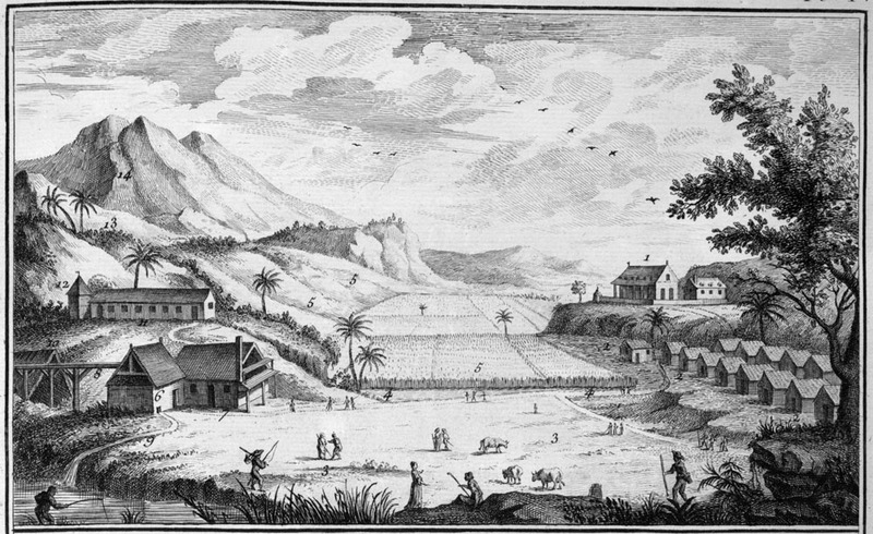This illustration is a generalized view of what is supposed to be a typical sugar plantation in the French West Indies. Details of the illustration are given in Diderot, section on Agriculture, p. 11. For example, on the upper right (1) is shown the houses of the owner and overseers (surrounded by a fence); on the lower right, the houses of the slaves, forming one or two or more streets, depending on the size of the plantation (2); sugar cane fields in the center and left (5); the water mill for grinding canes is on the lower left (6) and the boiling house (7) next to it; the curing house, where the sugar is dried in pots is on the upper left (12), and fields devoted to food crops such as manioc and bananas are on the upper slopes to the left (13). A slightly altered and reversed version of this image is in M. Chambon, Le commerce de l'Amérique par Marseille (Avignon 1764), Vol. 1, plate V, facing p. 382.