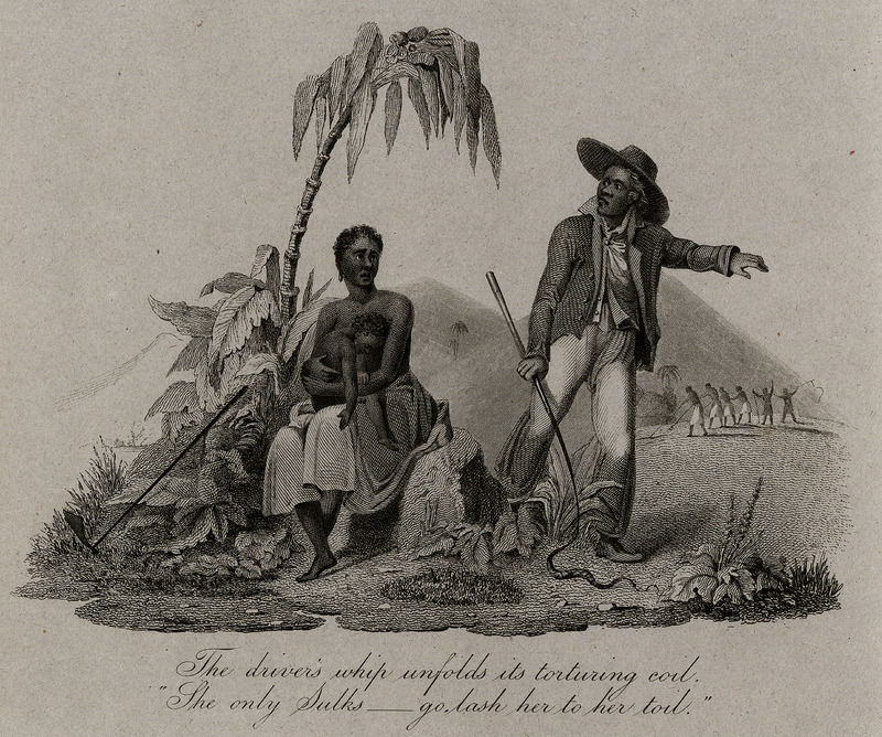 One of several artist-created illustrations not uncommonly reproduced in the British antislavery/abolitionist literature of the period. The scene is a West Indian island, a black woman with a small child on her lap being forced into the fields by a black driver holding a whip; in the background a group of slaves working under the whip. The poem extract underneath, The driver's whip unfolds its torturing evil..., may have been taken from a poem by William Cowper (deceased 1800), the celebrated English poet, who had lent his support to the British movement against the slave trade in the late eighteenth century, and was author of the famous poem used by this movement, The Negro's Complaint. See also images JCB_69-1068-1 and JCB_69-1068-2.
