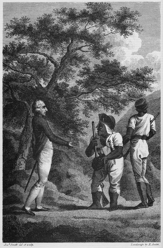 "This image portrays the leader of the western Maroons of Trelawney Town with a British officer.  The African name Cudjoe corresponds to the Akan day name Kojo, Codjoe or Kwadwo from the Voltaic region. A peace treaty was concluded between the Maroons and the British under a large cotton-tree on March 1, 1738. According to Dallas, ""Cudjoe was rather a short man, uncommonly stout, with very strong African features. . . He had a very large lump of flesh upon his back, which was partly covered by the tattered remains of an old blue coat, of which the skirts and the sleeves below the elbows were wanting. Round his head was tied a scanty piece of white cloth. . . He had on a pair of loose drawers that did not reach his knees, and a small round hat with the rims pared so close to the crown, that it might have been taken for a calabash, being worn exactly to the rotundity of his head. On his right side hung a cow's horn with some powder, and a bag of large cut slugs; on the left side he wore a mushet, or couteau, three inches broad, in a leather sheath, suspended under his arm by a narrow strap that went round his shoulders. He had no shirt on, and his clothes. . . as well as the part of his skin that was exposed, were covered with the red dirt of the Cockpits, resembling oker"" (vol. 1, pp. 53-54)."