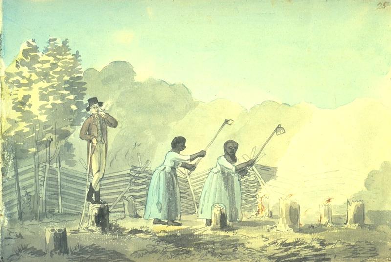Drawing in pen, ink, and watercolor, titled An Overseer Doing his Duty. A white overseer supervises two enslaved females working in a tobacco field with long-handled hoes. This scene was sketched from life near Fredericksburg, 13 March 1798.