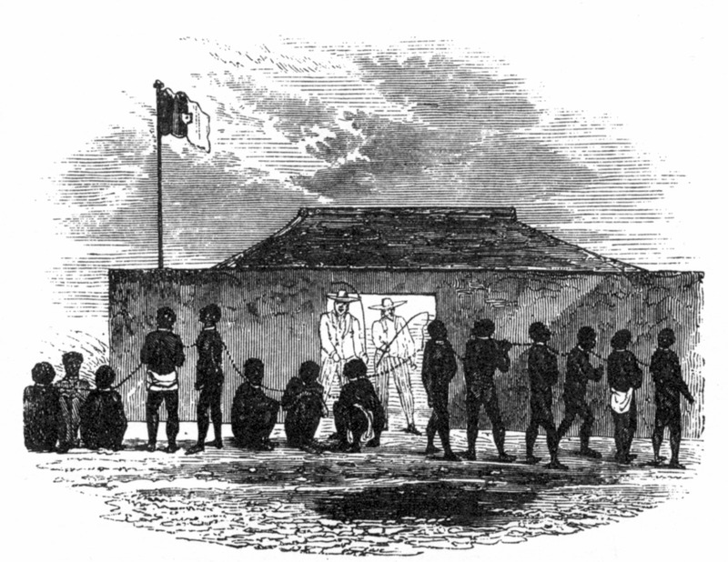"""This image shows a group of enslaved Africans linked together in a coffle by chain or rope in front of a small building. European slave traders in background. Forbes described his visit to Little Popo in the Bight of Benin region as """"an extensive slave port. . . The houses are badly built; that in which I am living forms the four sides of a square. . . the fourth [side] is a stable and sleeping house for the blacks, many of whom have the small-pox"""" (vol. 1, pp. 98-100). Frederick E. Forbes went to the Bight of Benin on a British anti-slavery mission in 1849 and 1850."""