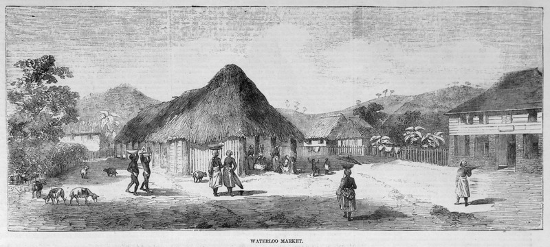Caption, Waterloo Market, shows what is described as the second most important market in Sierra Leone, after Freetown. The marketplace occupies one side of a spacious quadrangle, which has in its centre a circular inclosure (p. 436); the building at the right is inhabited by the British colonial official.