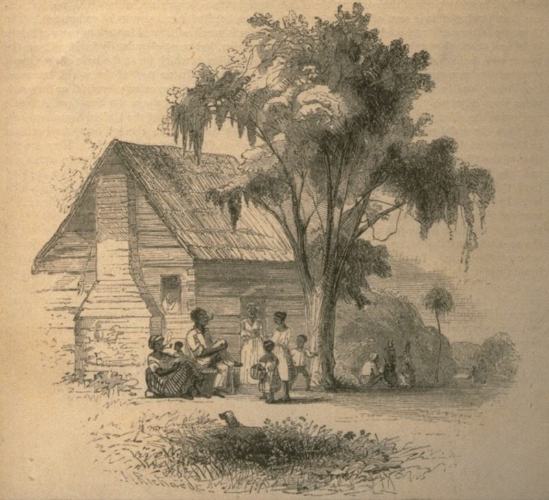 Caption, negroes at home; shows group of people in front of a cabin; man and woman smoking pipes. Each family of negroes has a house or cabin of its own, generally with sufficient garden ground, piggery, hennery, and so forth. These cabins are often made of logs, but sometimes are neat and cozy frame buildings. . . . Men and women all smoke habitually, whether at work or at rest... (Richards, p. 732).