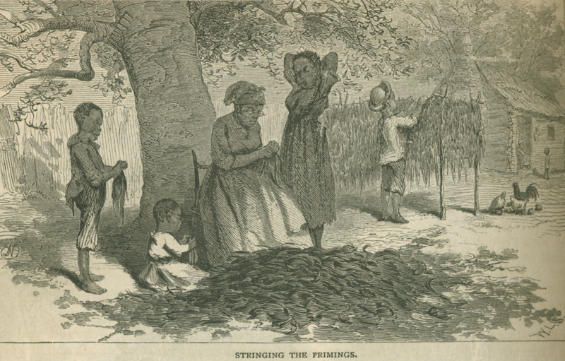 Caption: Stringing the Primings; shows a woman removing the lowest leaves of the tobacco plant (the primings), helped by small children; a boy in the background hangs the leaves out to dry. Although this scene is from the post-emancipation period, it can serve to illustrate earlier years. See King for description of tobacco trade in the Richmond (p. 632 ff.).