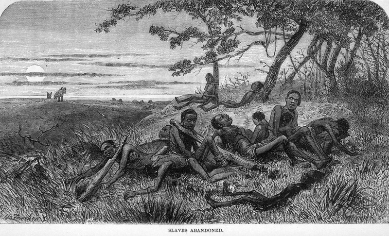 "This engraving shows a small group of captured African who were left to die, some with the slave sticks still around their necks and hyenas hovering in the background. These people were being taken across Central Africa to the east coast of Africa. On June 27, 1866, Livingstone described how his expedition ""came upon a man dead from starvation. . . One of our men wandered and found a number of slaves with slave-sticks on, abandoned by their master from want of food; they were too weak to be able to speak or say where they had dome from; some were quite young"" (p. 62). This engraving, as others in the book, was made from one of Livingstone's sketches. David Livingstone (1813–1873) was a famous Scottish physician, Christian missionary, explorer and abolitionist. His interest was to locate the source of the Nile River. His missionary work also reinforced the European ""Scramble for Africa"" and the colonization of the continent.  Although often reproduced in modern secondary sources, the primary source is rarely cited. Also published in J. E. Chambliss, The Life and Labors of David Livingstone (Philadelphia, 1875), p. 439, where it is captioned ""Left to their Fate"" in The Life and African Explorations of Dr. David Livingstone (St. Louis, 1874), p. 123; and in Thomas W. Knox, The Boy Travellers on the Congo (New York, 1888), p. 421, where it is captioned ""Slaves Left to Die."" Knox is sometimes, erroneously, cited as the primary source."