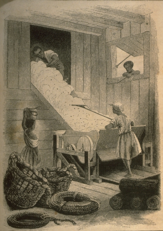 Men and women at work. Illustrates an article (pp. 447 ff.) cotton and its cultivation, by T.B. Thorpe of Louisiana.