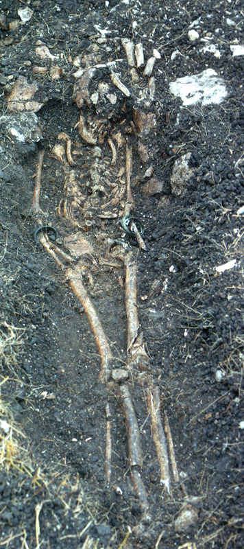 This photograph shows a buried skeleton extended on its back in situ with copper bracelets on each arm and a pipe bowl on the pelvic area. Handler suspects this individual was possibly an Obeah medicine man and likely from the Voltaic region. For a close up of the torso see image Newton001a. For more detail on the items found on this person see images Newton002-Newton007.
