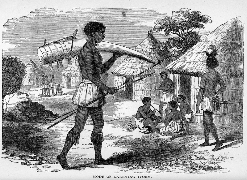 Captioned, Mode of Carrying Ivory, the engraving shows a Central African village scene with people gathered in front of their houses, a woman carrying a jar on her head, a man smoking a pipe; in the foreground a male is carrying a large elephant's tusk on his shoulder while holding two spears in his right hand. This volume is based on the writings of David Livingstone, but it is unclear if the engraving was done specifically for this volume or is based on another source.