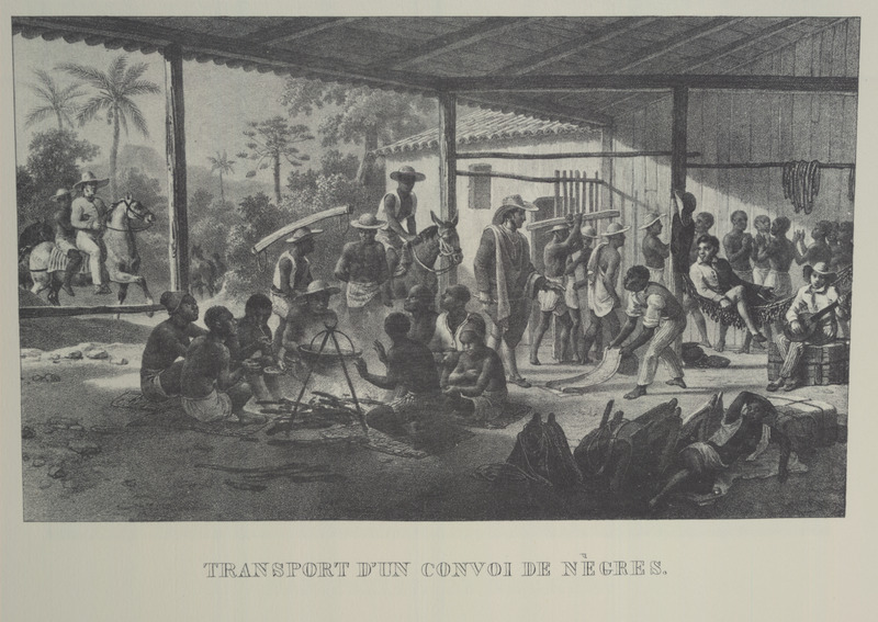 Transport d'un convoi de Negres (transportation of a convoy of Blacks) shows group of newly purchased, or about -to- be- purchased, slaves waiting to be taken into the interior. For an analysis of Rugendas' drawings, as these were informed by his anti-slavery views, see Robert W. Slenes, African Abrahams, Lucretias and Men of Sorrows: Allegory and Allusion in the Brazilian Anti-slavery Lithographs (1827-1835) of Johann Moritz Rugendas (Slavery & Abolition, vol. 23 [2002], pp. 147-168).