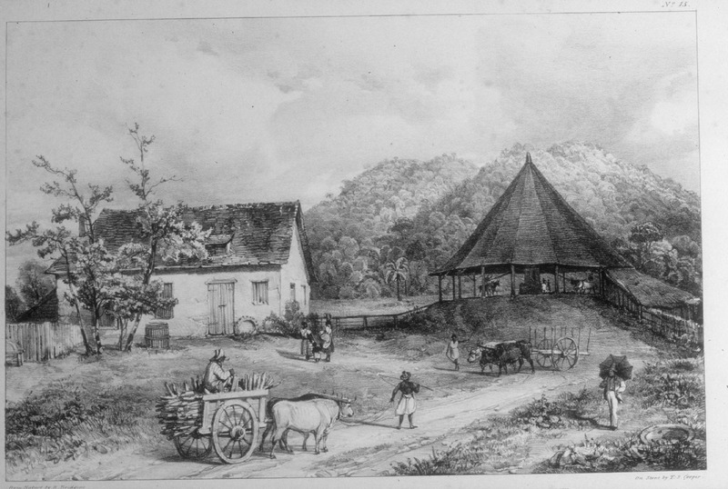 """This sketch was taken from the estate of St. Clair farm. Bridgens depicted """"ox carts, the boiling house (left) and mule-powered mill with vertical rollers (right). A Negress, called the 'feeder' . . . introduces the fresh canes between the two first rollers. A sculptor, furniture designer and architect, Richard Bridgens was born in England in 1785, but in 1826 he moved to Trinidad where his wife had inherited a sugar plantation, St. Clair. Although he occasionally returned to England, he ultimately lived in Trinidad for seven years and died in Port of Spain in 1846. Bridgens' book contains 27 plates, thirteen of which are shown on this website. The plates were based on drawings made from life and were done between 1825, when Bridgens arrived in Trinidad, and 1836, when his book was published. Although his work is undated, the title page of a copy held by the Beinecke Rare Book Room at Yale University has a front cover with a publication date of 1836, the date usually assigned to this work by major libraries whose copies lack a title page. Bridgens' racist perspectives on enslaved Africans and his defense of slavery are discussed in T. Barringer, G. Forrester, and B. Martinez-Ruiz, Art and Emancipation in Jamaica: Isaac Mendes Belisario and his Worlds (Yale University Press, 2007), pp. 460-461. Bridgens' life is discussed extensively along with discussion of his drawings and presentation of many details on slave life in Trinidad in Judy Raymond, The Colour of Shadows: Images of Caribbean Slavery (Coconut Beach, Florida: Caribbean Studies Press, 2016). Raymond's book, which is an essential source for any study of Bridgens, also includes a number of unpublished sketches of Trinidadian slave life. See also Brian Austen, Richard Hicks Bridgens (Oxford Art Online/Grove Art Online)."""