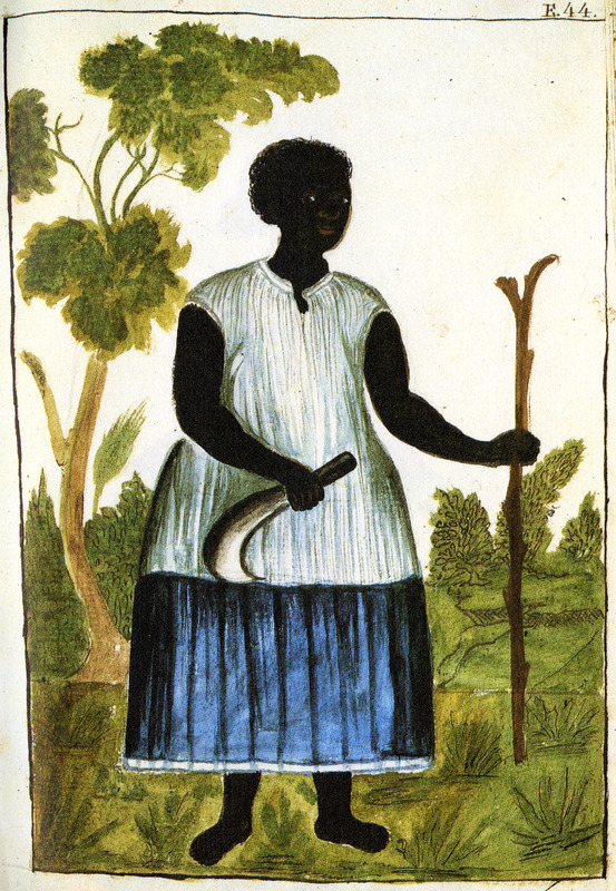 Drawing simply identified as Negra, shows a black woman holding a bill hook or cutlass in one hand, a wooden staff in another; she appears to be wearing a sleeveless long dress (or a skirt and chemise). This and hundreds of other drawings were done by unidentified Native Americans during the 1780s and were commissioned by the Spanish Bishop Baltazar Jaime Martinez Companon during his pastoral visit to the region of Trujillo in northern Peru. The drawings, spread over nine volumes, are of Spaniards, Native Americans, plants and animals, as well plans and maps of the region. Only Vol. 2 contains a few pictures of blacks, the index to the volume giving very sparse information on each drawing. (See other images Trujillo on this website.)