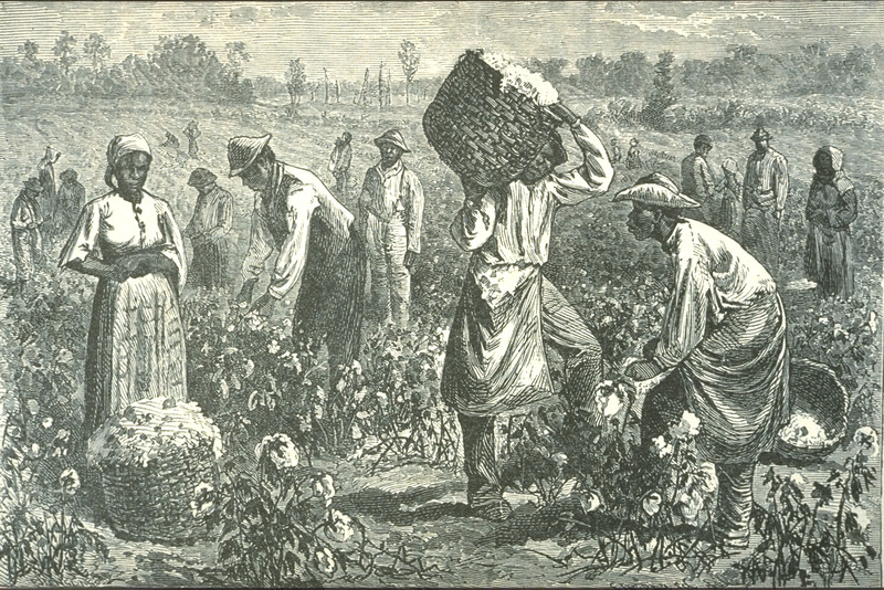 Men and women in the field; baskets loaded with picked cotton. Although post-emancipation, this scene evokes the period of slavery as well.  Published earlier in Edward King, The Great South . . . profusely illustrated from original sketches by J. Wells Champney (Hartford, Conn., 1875), p. 307.